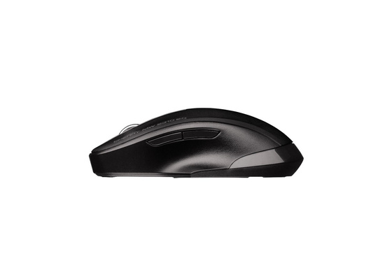 Mouse Cherry MW 2310 Wireless 2.0, black, USB