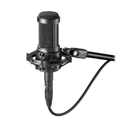 Microphone Audio-Technica AT2035, XLR